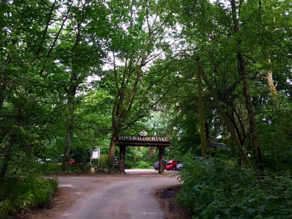 Ausflugsziel Pony-Waldschänke: Ab in den Schatten, raus in den Wald ...