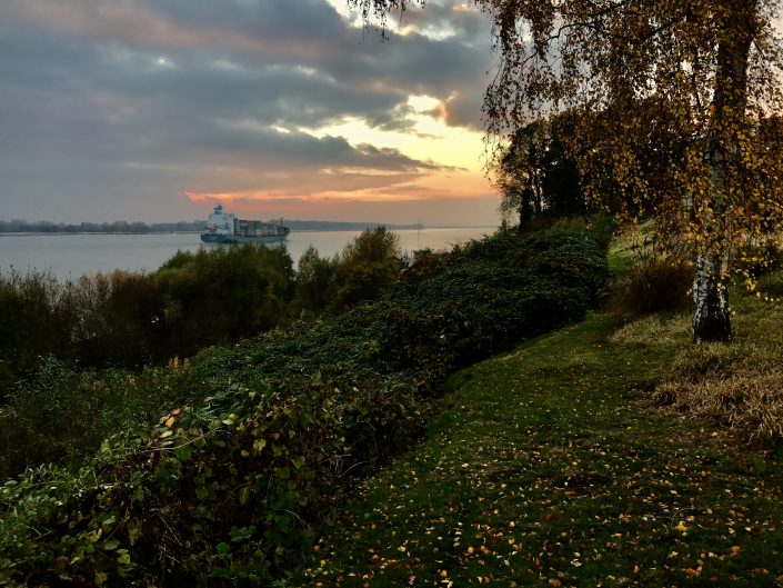 2016 11 05 Wedel Elbe Elbewanderweg Herbst Nachmittag
