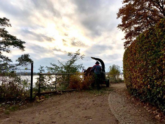 2016 11 07 Wedel Elbe Elbwanderweg Laubsauger