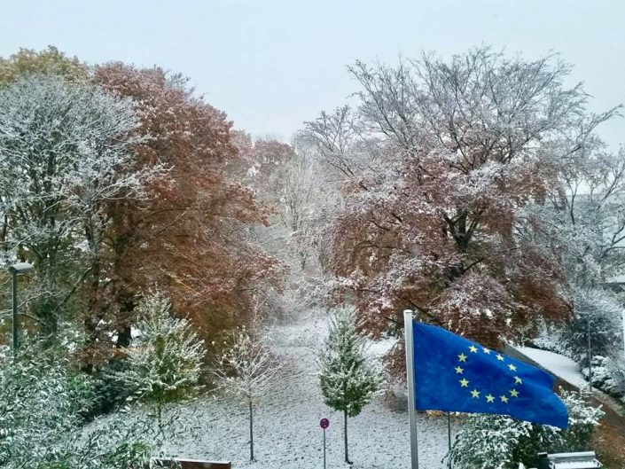 2016 11 08 Wedel Schneebilder Bild 4