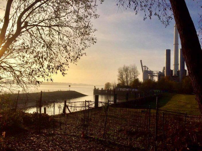 2016 11 12 Wedel Elbe Elbwanderweg Nachmittagsspaziergang Schnalles Hafen