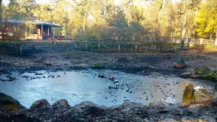 Mein Wedel - Klövensteen - Wildgehege Sonntagsspaziergang Teich Wildschweingehege