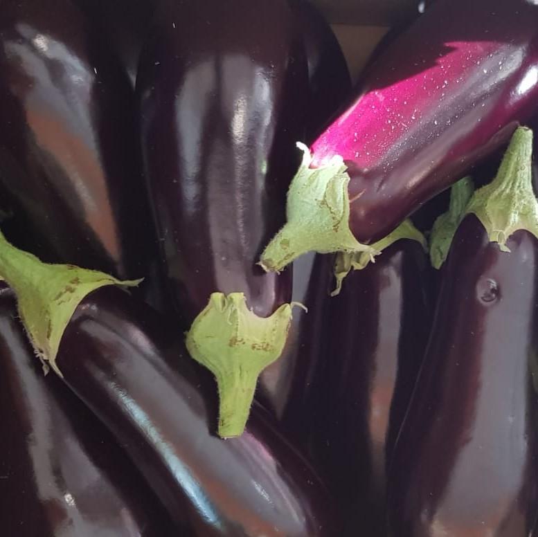 Mein-Wedel-elbkiosk-Frischemarkt-Obst-Gemüse-12