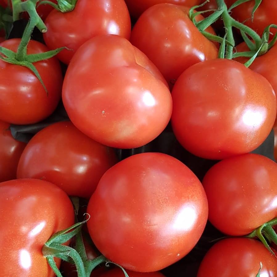 Mein-Wedel-elbkiosk-Frischemarkt-Obst-Gemüse-22