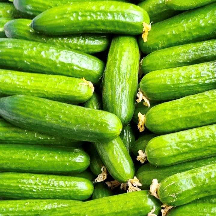 Mein-Wedel-elbkiosk-Frischemarkt-Obst-Gemüse-7