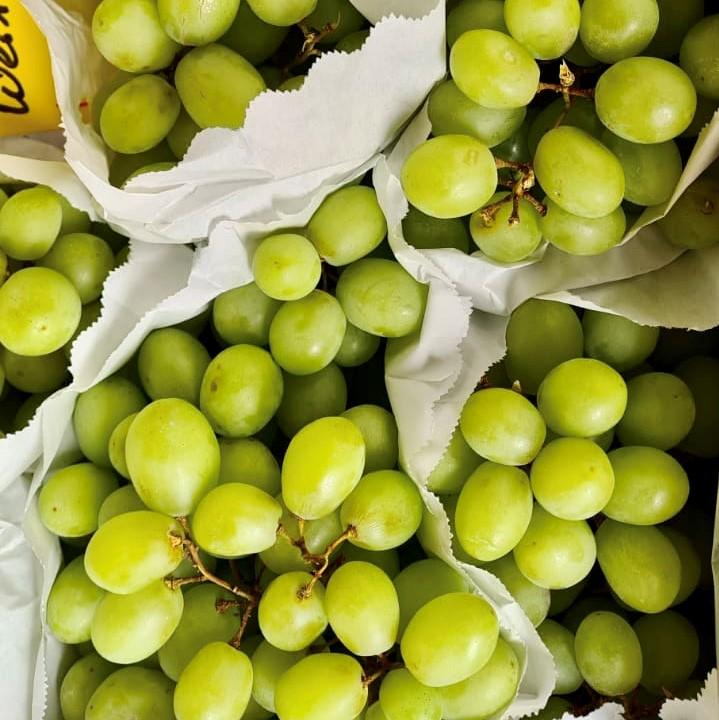 Mein-Wedel-elbkiosk-Frischemarkt-Obst-Gemüse-8