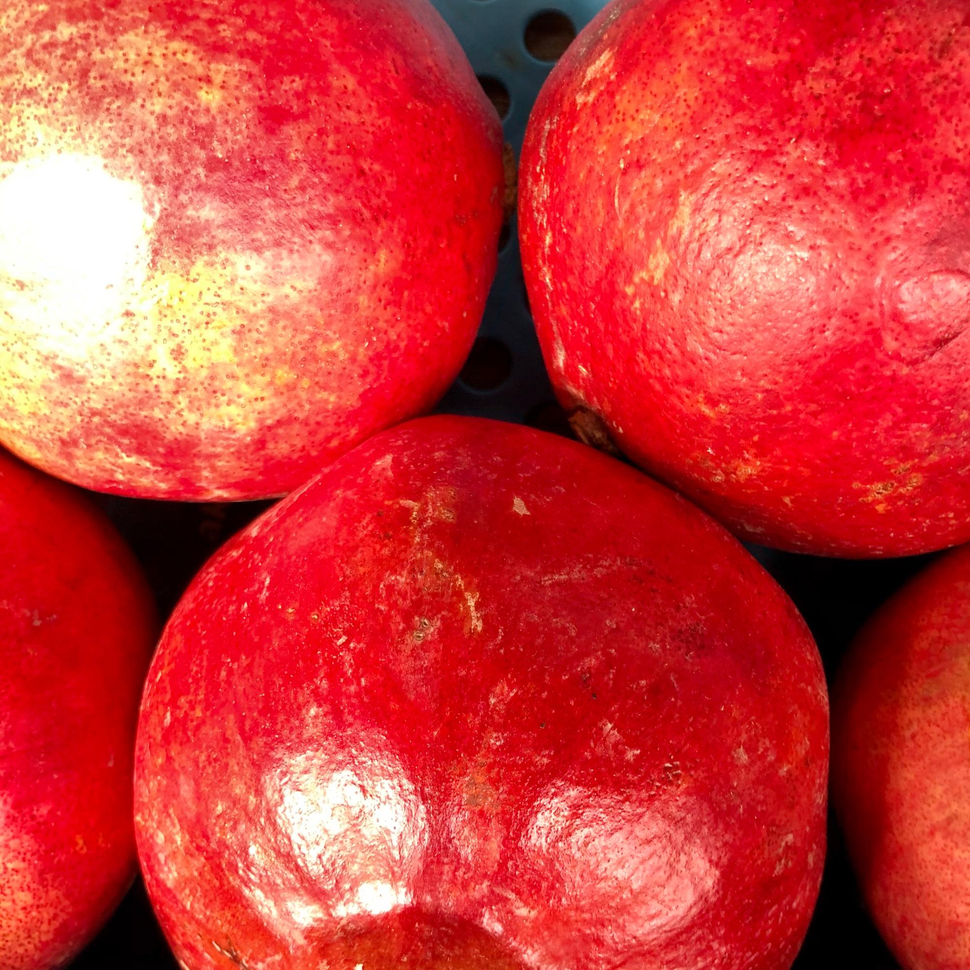 Mein-Wedel-elbkiosk-Frischemarkt-Obst-Gemuese-18