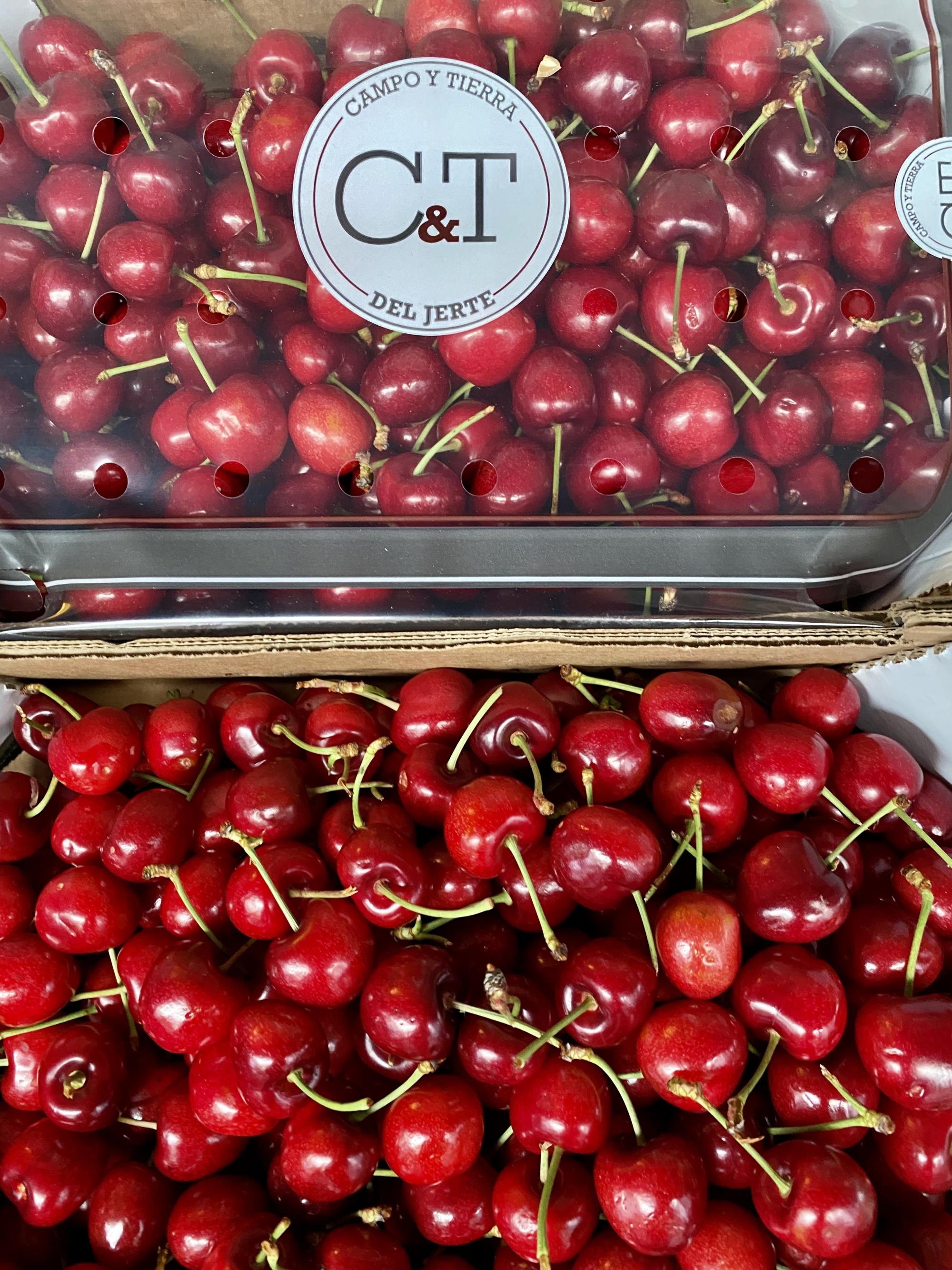 Mein-Wedel-elbkiosk-Frischemarkt-Obst-Gemuese-24
